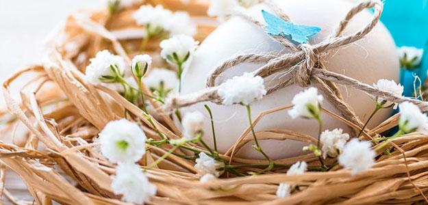 Wielkanoc w Modrzewie Park Hotel***** od 390 zł!