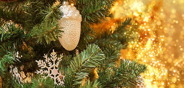 Boże Narodzenie w Hotelu Kudowa