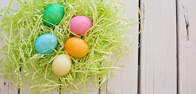 Wielkanoc w Borach Tucholskich. PROMOCJA!