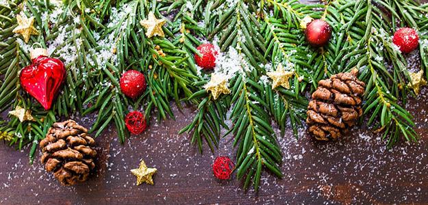 Święta Bożego Narodzenia na Mazurach. 5 dni - 960 zł/os.