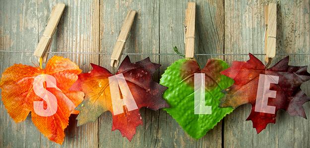 Znalezione obrazy dla zapytania promocja jesienna
