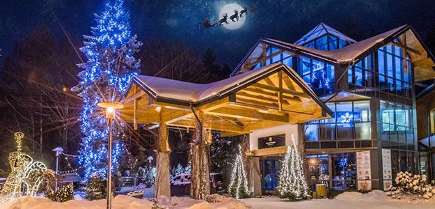 Oferty na Boże Narodzenie 2018.   OBIEKTYSPA.COM