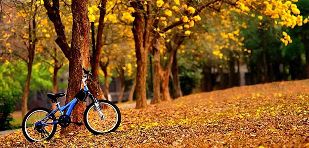 Jesienna promocja na pobyt w Beskidach